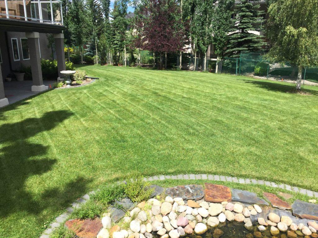 lawn u0026 landscaping u2013 yyc oasis